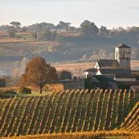 Bordeaux et environs, découvertes et randonnées