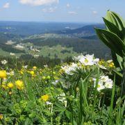 Pentecôte 2016  Stretching & Randonnée Jura