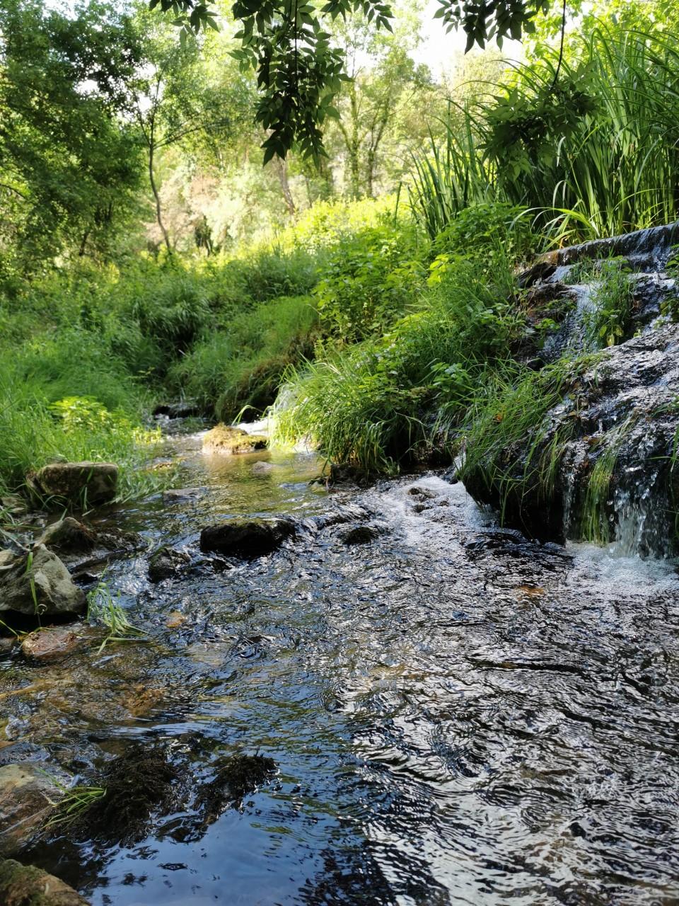 Rivières ,Cascades et lacs 14/06/20