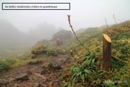 RANDONNEE EN GUADELOUPE 7/01/21