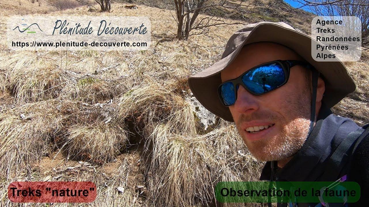 Trek et randonnée en montagne, découvrez la nature !