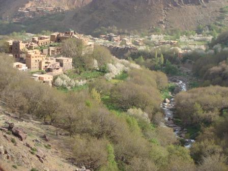 morocco16.jpg